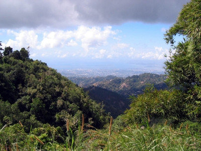 Touristic attractions of Jamaica : Blue Mountains