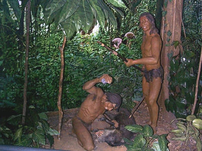 Touristic attractions of Martinique : Pre-Columbian Museum