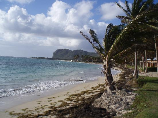 Touristic attractions of Saint Lucia : Vieux Fort
