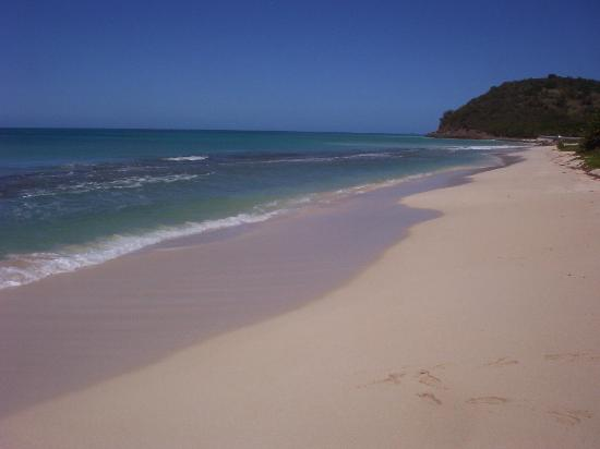 Touristic attractions of Antigua and Barbuda : Darkwood Beach