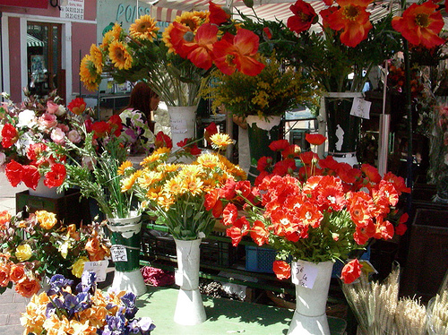 Touristic attractions of Mediterranean : Cours Saleya Flower Market, Nice