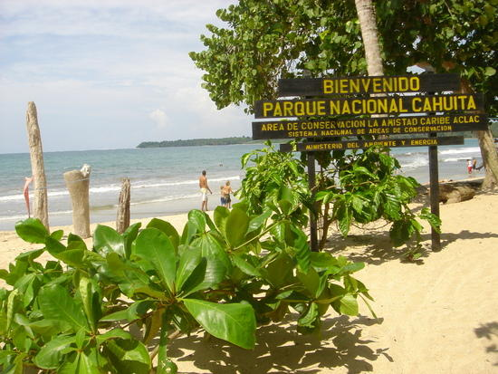 Touristic attractions of Costa Rica : Cahuita National Park